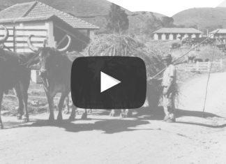 Documentário: Na Curva do Rio